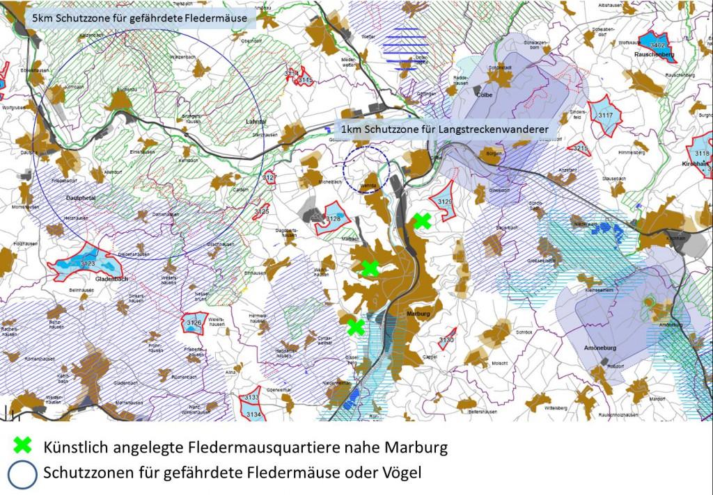 20140608-Fledermausquartiere_in_Marburg